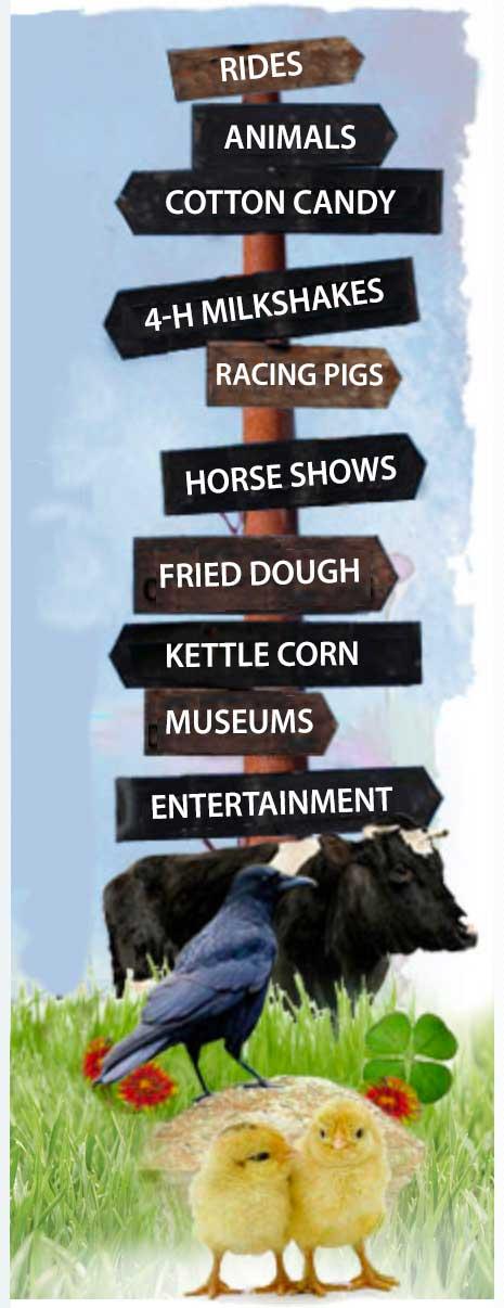 Ulster County Fair sidebar